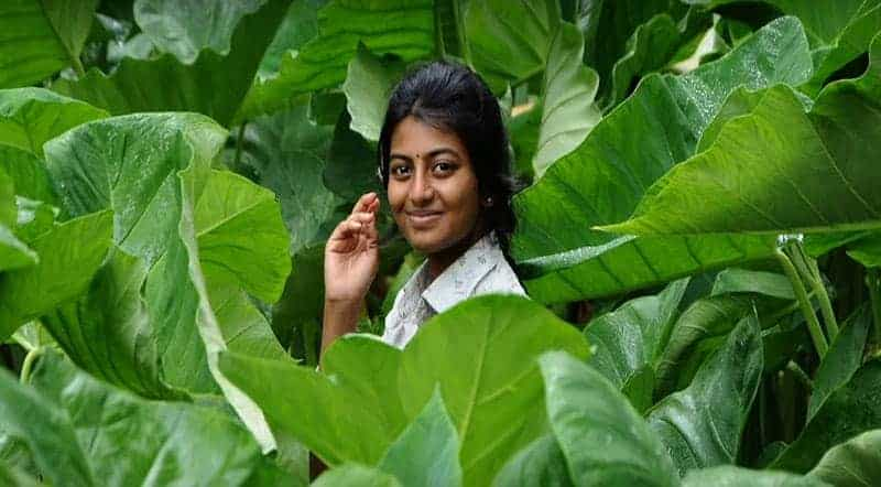 Yen Aala Paakkaporaen Song Lyrics From Kayal